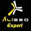 AliSEOExpert