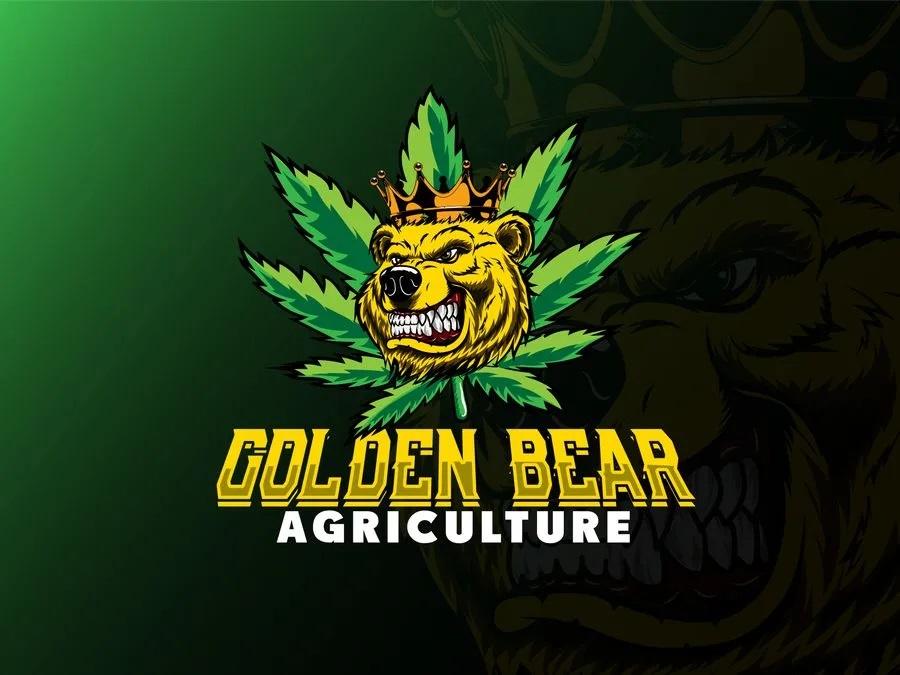 I will design a creative mascot or cartoon logo for you