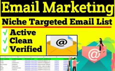 I will provide per 1k 1 Doller an active niche targeted email list