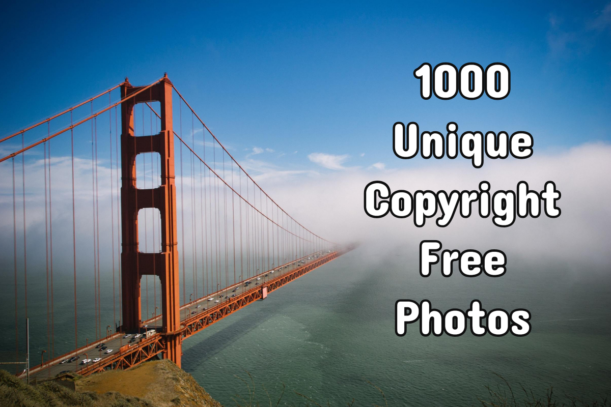 1000 Unique Stock Photos