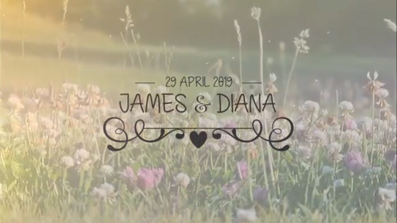 Create A Cute Wedding Invitation Video