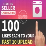 Add 100 likes each to your last 10 post