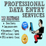 I will do data entry,  copy and paste from websites or PDF to Excel or word