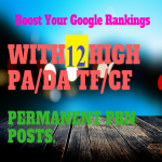 Get 12 High PBN Backlinks To Boost Your SERP
