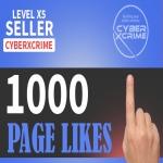 Add 1000 Fast Page