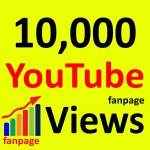 Super Fast 10,000+ High Retention 90 To 100 Percent Non Drop Vi ews