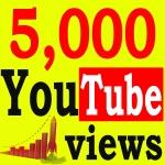 Fast 5,000+ High Retention 90 To 100 Percent Non Drop Vi ews