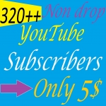 I will Give you 320 + Non Drop YouTube Subscribers