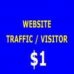 6000+ Human Website traffic/Visitors