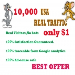 Drive 10,000 real human usa web traffic