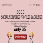 I give you 5000 Social networks profiles backlinks
