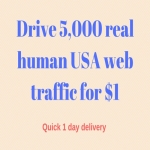Drive 5,000 real human usa web traffic in 24 hours