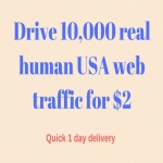 Drive 10,000 real human usa web traffic in 24 hours