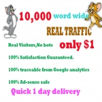 Drive 10,000 real human web traffic in 24 hours