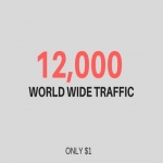 Drive 12,000 WORLD WIDE human web traffic