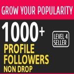 Add 1000 High Quality Fast Profile Followers NON DROP