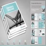 Will design professional brochure,  Gflyer,  postcard