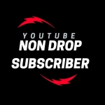 Instant add Safe 300 You+tube Channel Non Drop Subscriber Guarenteed Within 2-6 hours