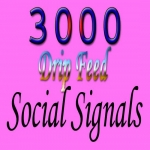 website mixed 3000 drip feed best social signals