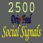 permanently provide 2500 drip feed social signals