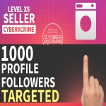Get 1000 Fast Profile Targeted Followers