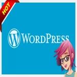 WordPress Website Service